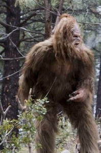 prank sasquatch bigfoot