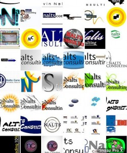 Nalts Consulting Logo finalists